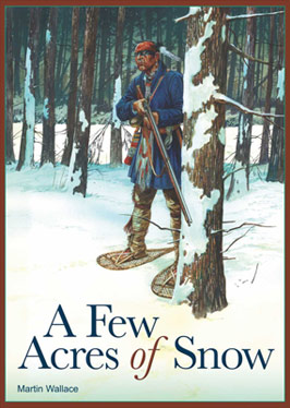 A Few Acres Of Snow by Treefrog Games